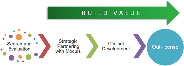 mocuis-build-value-process-b